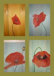 poppies wood room divider on a